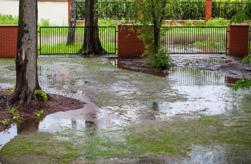 flooded back yard