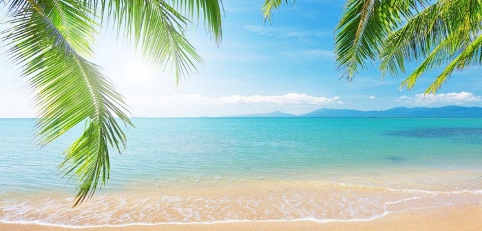 Picture of a tropical beach
