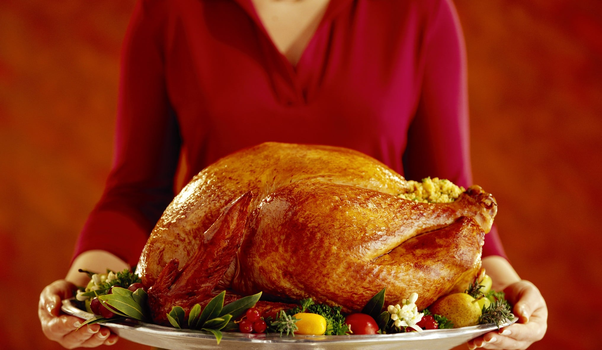 Picture of Thanksgiving Turkey