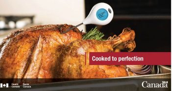 juicy turkey with a probe thermometer in it reading 82 degrees centigrade