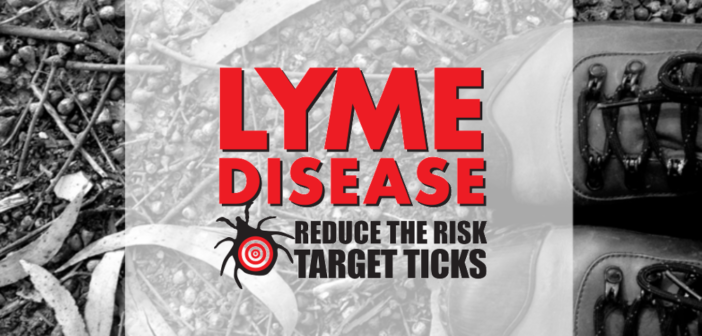 Everything You Wanted to Know About Lyme Disease, but Were Afraid to Ask