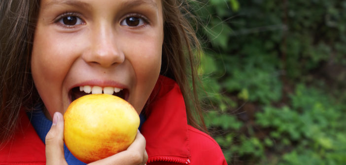 child biting an apple