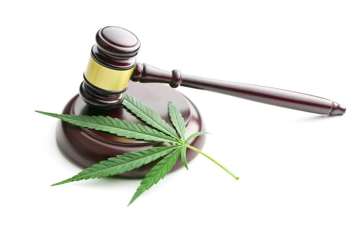 Cannabis and the law - Chatham-Kent Public Health Unit